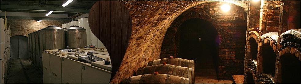 Pálava vinařský dům